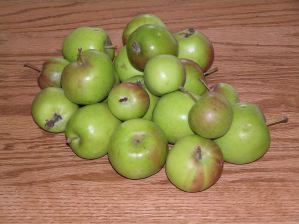 Great Green Pie Apples