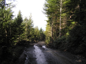 New Road At Striped Peak