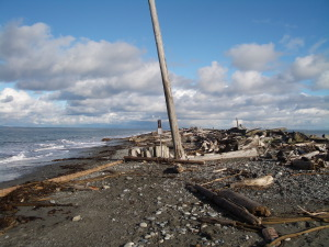 Dungeness Spit - Winter High Tide