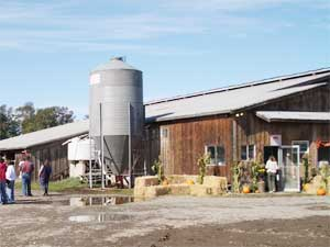 Dungeness Valley Farm and Creamery