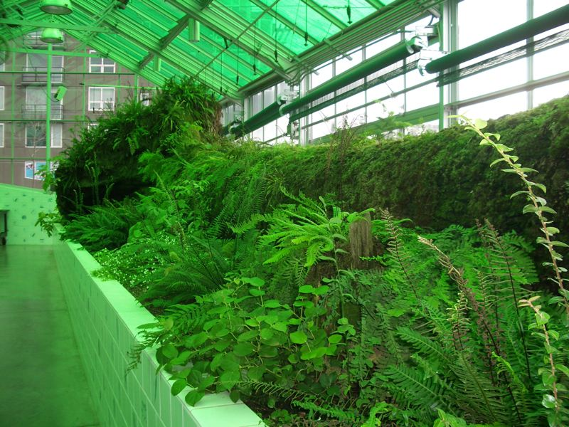 Contemporary Neukom Vivarium Nurse Log For Ideas