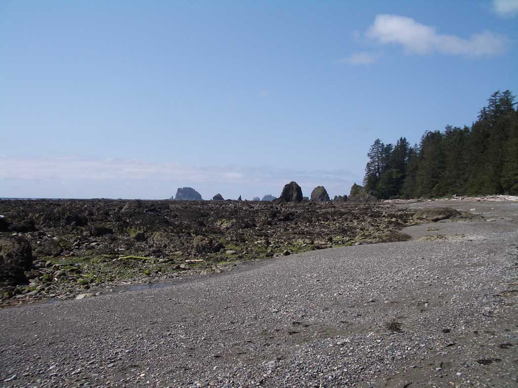 Cape alava the kalebergs even more beach at cape alava nvjuhfo Choice Image